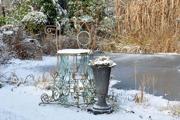 Garten im Winter (4)20130826