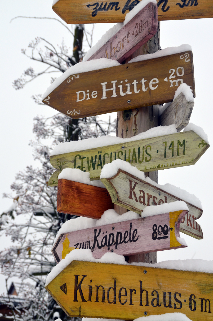 Schnee Und Rauhreif Verzaubern Den Garten Landgarten Himmelstadt