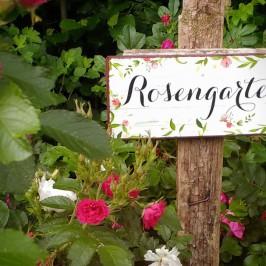 Abend der Rosen
