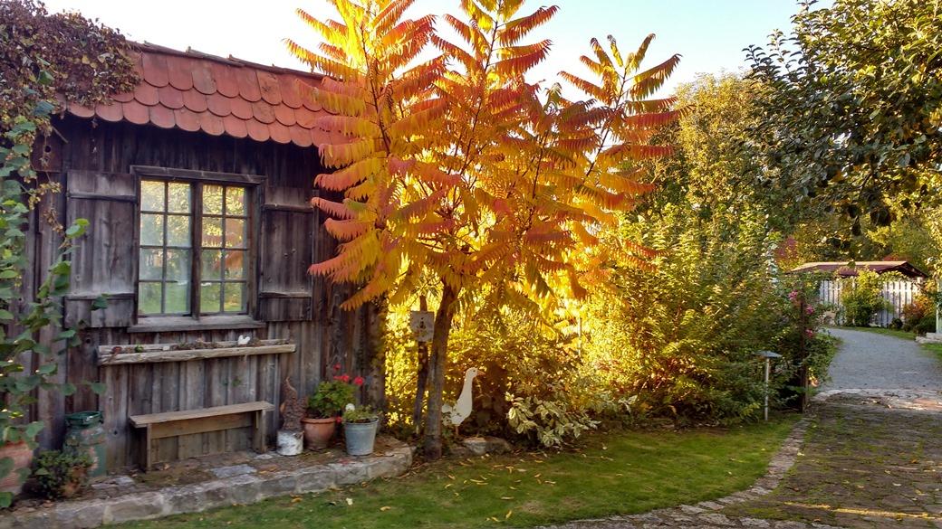 goldener oktober i landgarten in himmelstadt landgarten. Black Bedroom Furniture Sets. Home Design Ideas