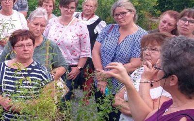 Programm der Natur- und Gartenfreunde 2020