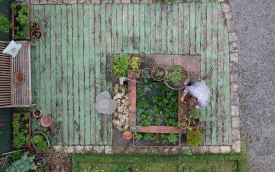 Lernen von der Natur: Der Traumgarten in Himmelstadt